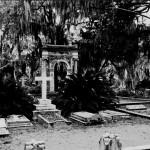 Southern Gothic (pt.1, zoals het er nu naar uitziet)
